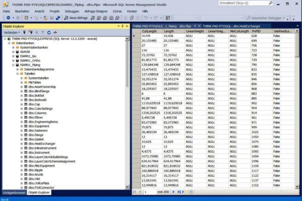 Autodesk AutoCAD Plant 3D – Datenbankmanagement 1